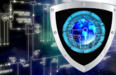 How Do I Protect Myself? My Company?